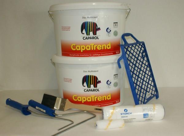 Farben - Set für den Renovierungsanstrich von bis zu 160m²